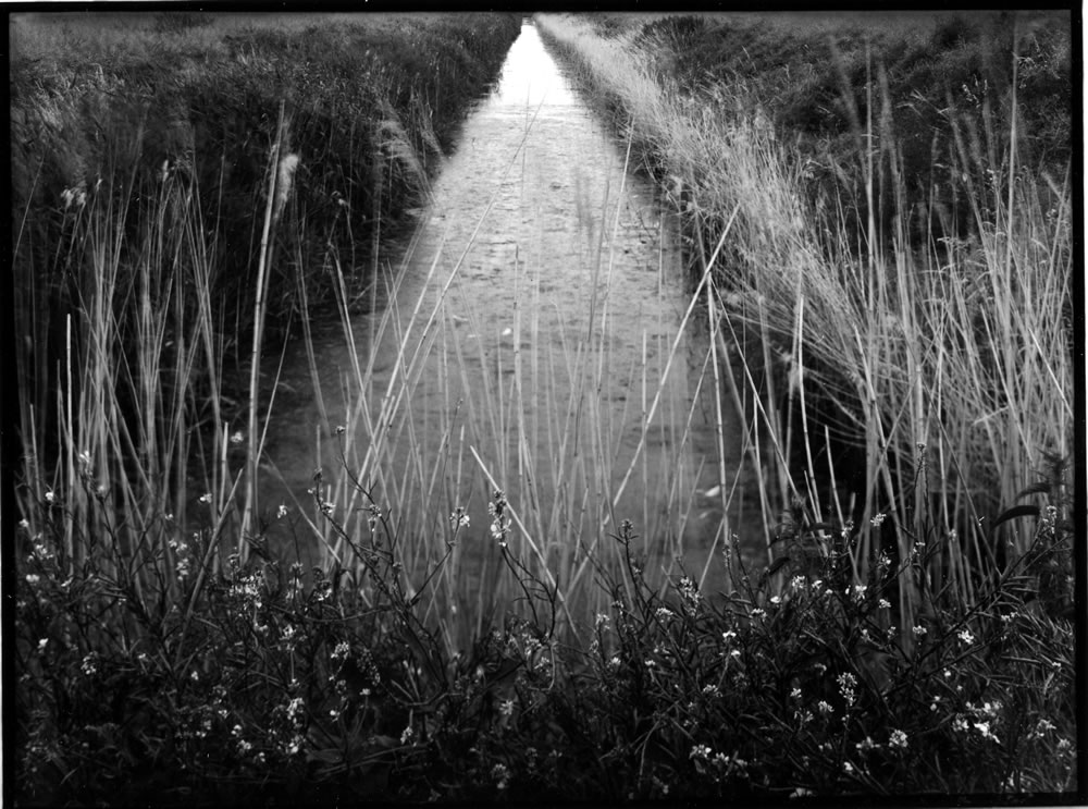 Lines drains and droves - Fenland #2