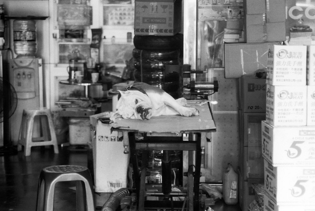 That Monday feeling - Shot on ILFORD SFX 200 at EI 200. Black and white negative in 35mm format.