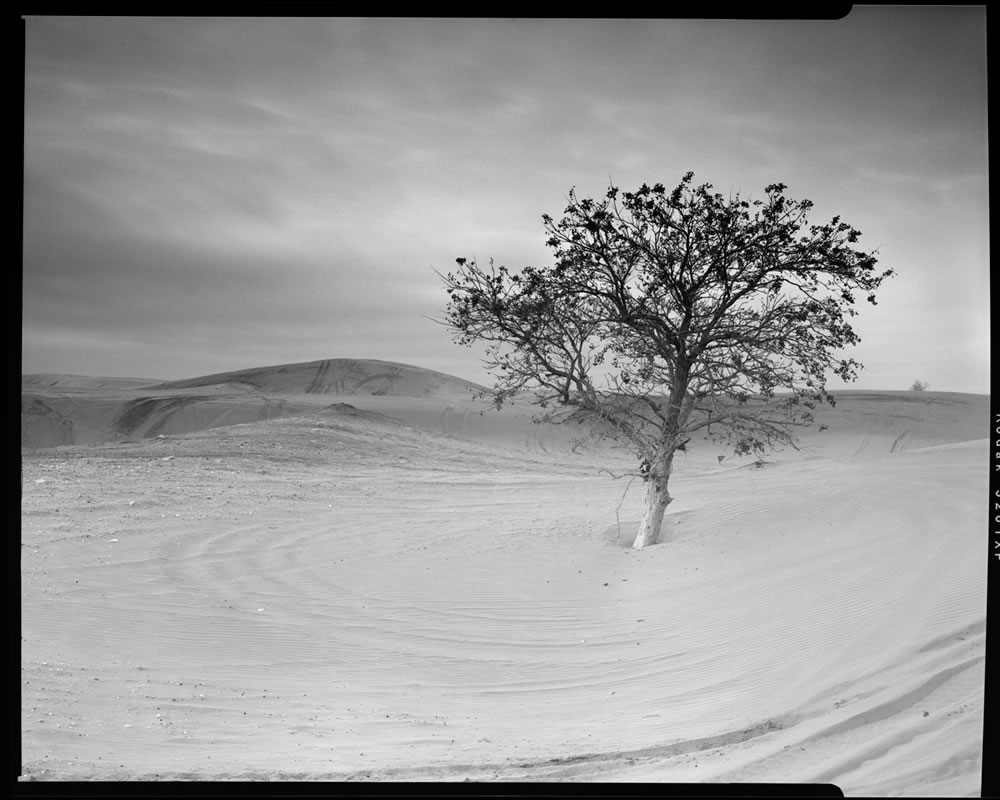 Little Sahara state park. Oklahoma. Kodak Tri-x 320. 150mm lens with 6-stops stacked GND filters