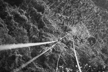 2016-05-23 – Beetlenut zipline. Ilford Delta 400 Professional shot at EI 800 Black and white film in 35mm format Push processed one stop