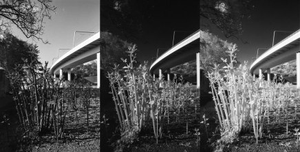 Fomapan 400 from left to right: no filter EI400, R72 EI6, R72 EI6 +2