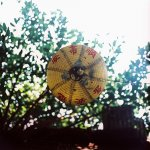 2016-07-12 - Underside - Kodak EKTACHROME E200 shot at EI100. Color reversal (slide) film in 120 format shot as 6x6. Expired and cross processed.