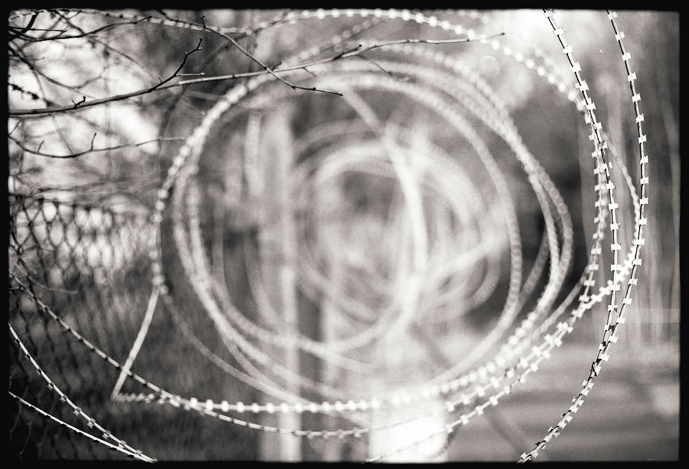 Wire - Canon AE1 on AGFA APX 100 New