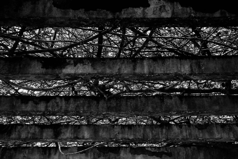 Stairs - Shot on Ilford Delta 100 Professional at EI 800. Black and white negative film in 35mm format.