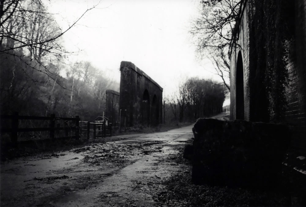 One of the first shots - Nikon FM - ILFORD FP4 PLUS