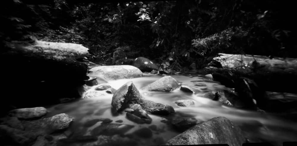 """Untitled"", Berenbum rainforest, Malaysia. Noon 612 pinhole, 60mm, f256, loaded with Fuji Acros 100 exposed at EI 100, developed in Adox Rodinal 1:50."