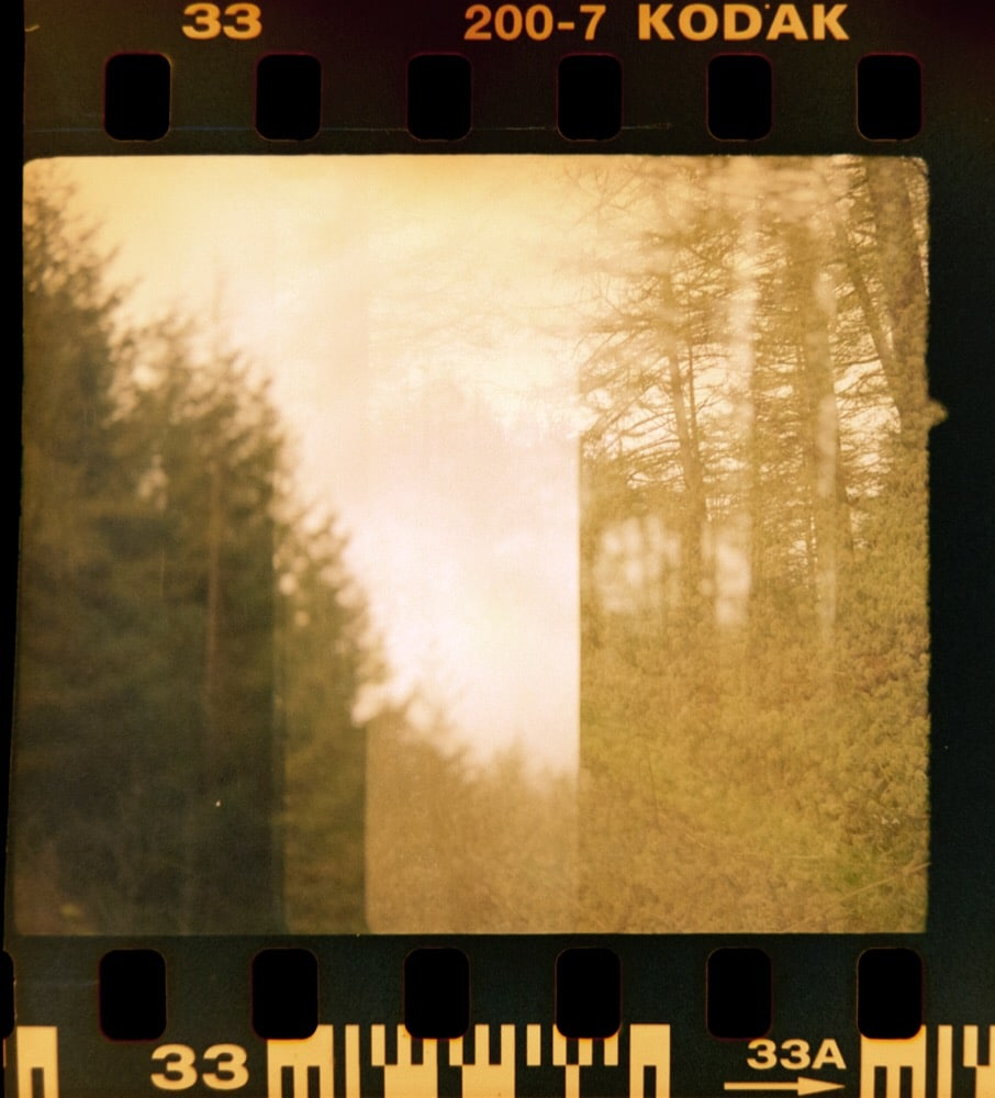 Pine Forest, Snowdonia, April 2017 - Agfa Paramat with Kodak 200. Two half frame images that overlapped.