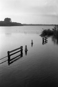 Finding Film part 15: Fomapan 400 Action