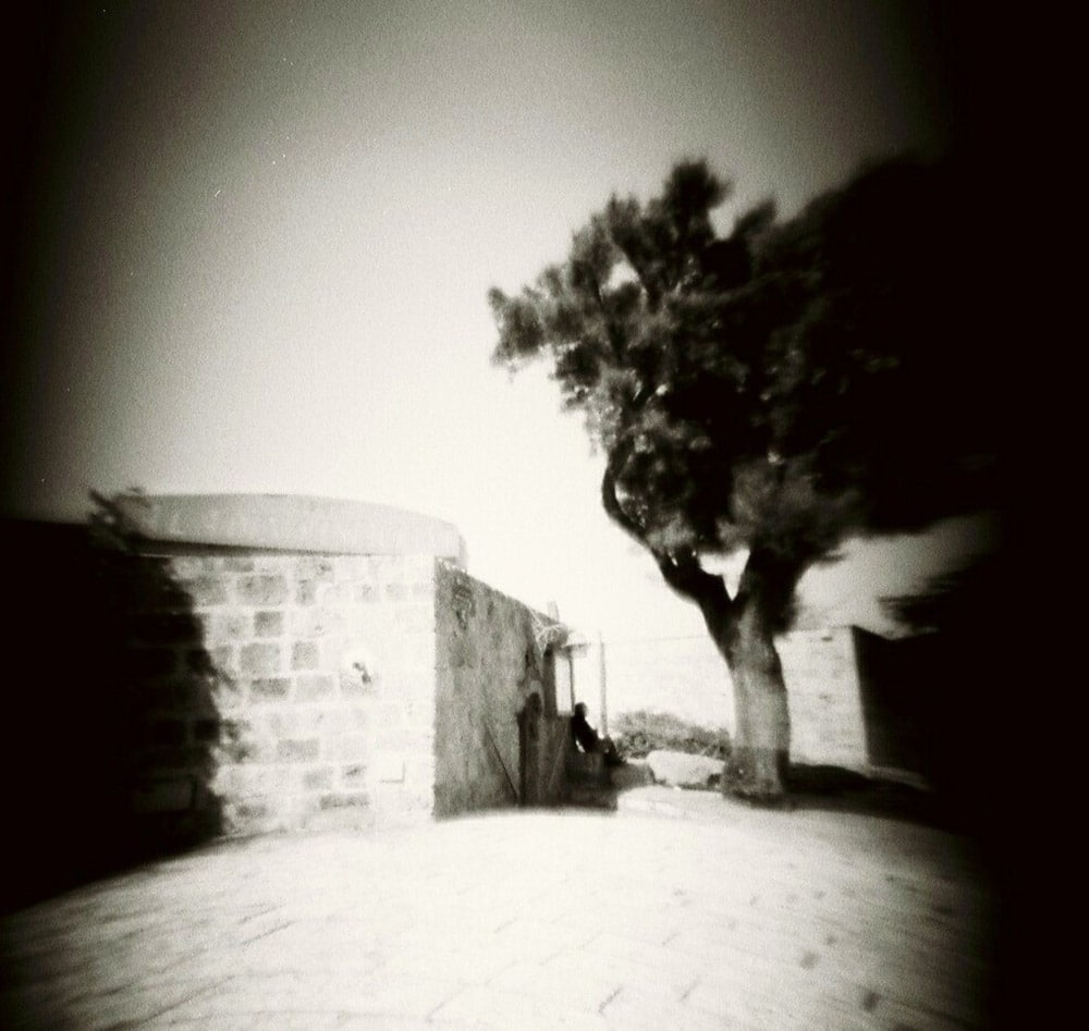 Old Yafo, ILFORD FP4 PLUS, Pinhole Blender mini-120 camera.