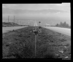 Kodak Verichrome Pan 100 - CAMERADACTYL 4x5 - Descanso on Route 66, coming into Albuquerque from the west_