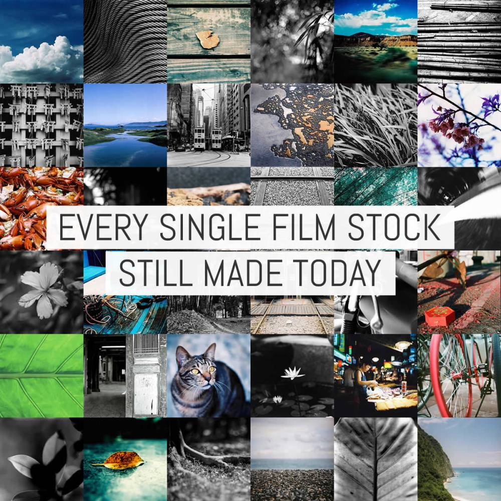 Every Film Stock Still Made