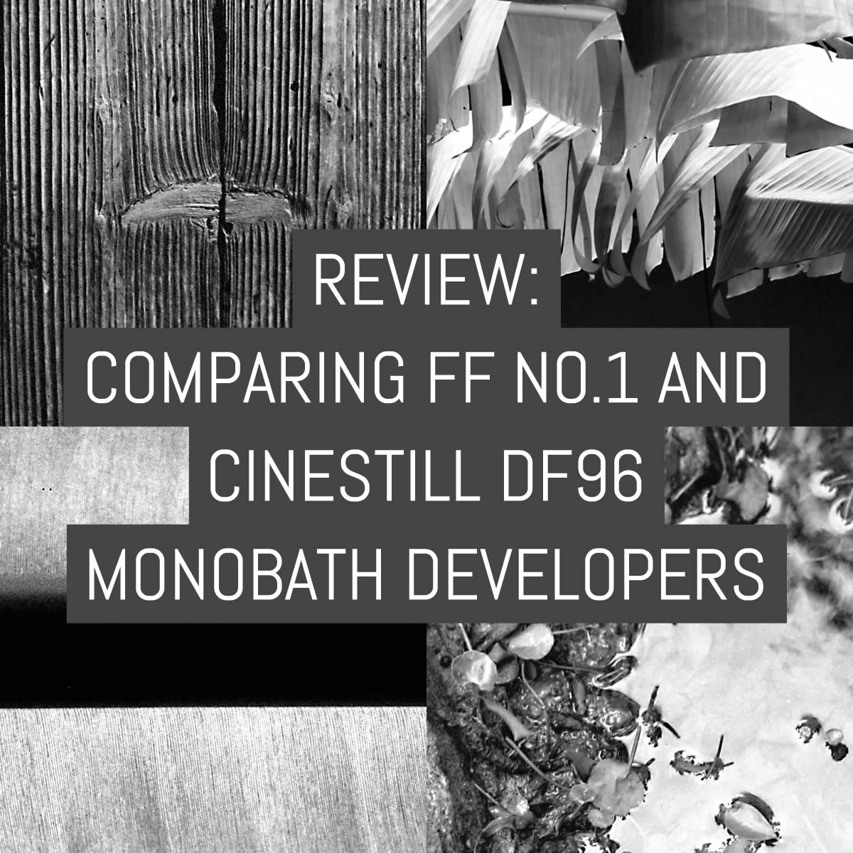 Review comparing ff no 1 and cinestill df96 monobath developers