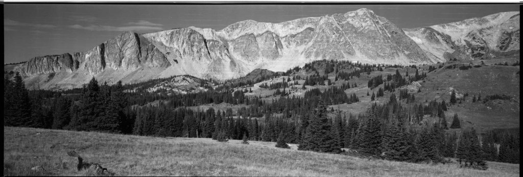 6x17 on ILFORD Pan F PLUS with the BOMM V810 and 250mm lens