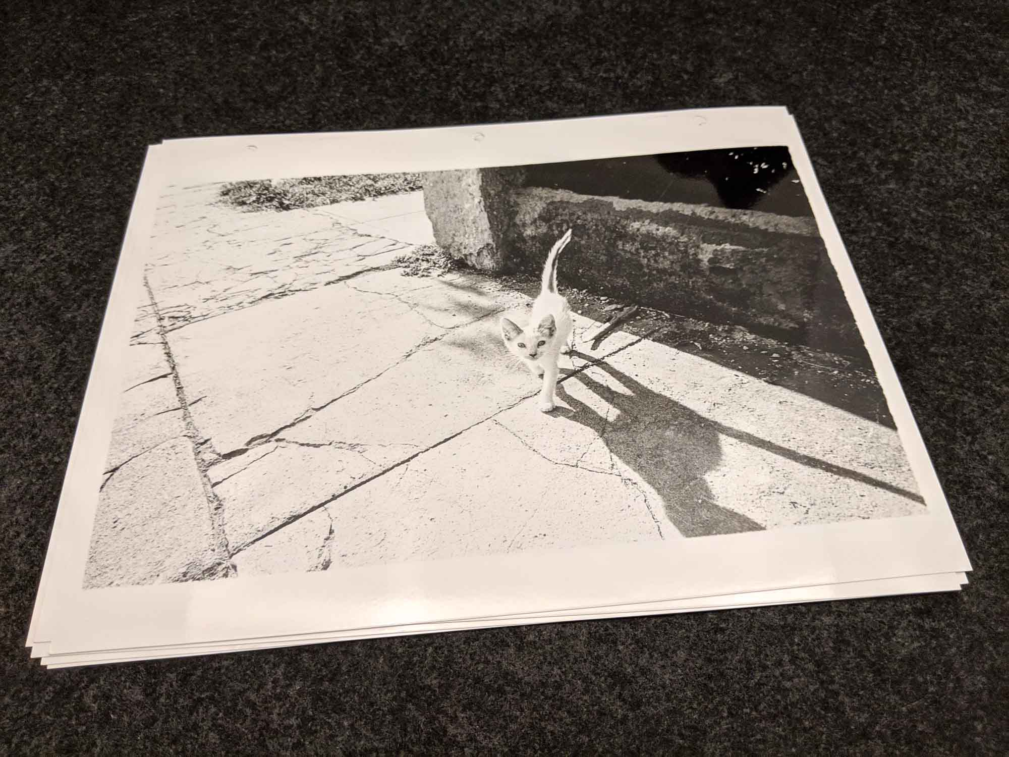 The Latent Image - Print 20