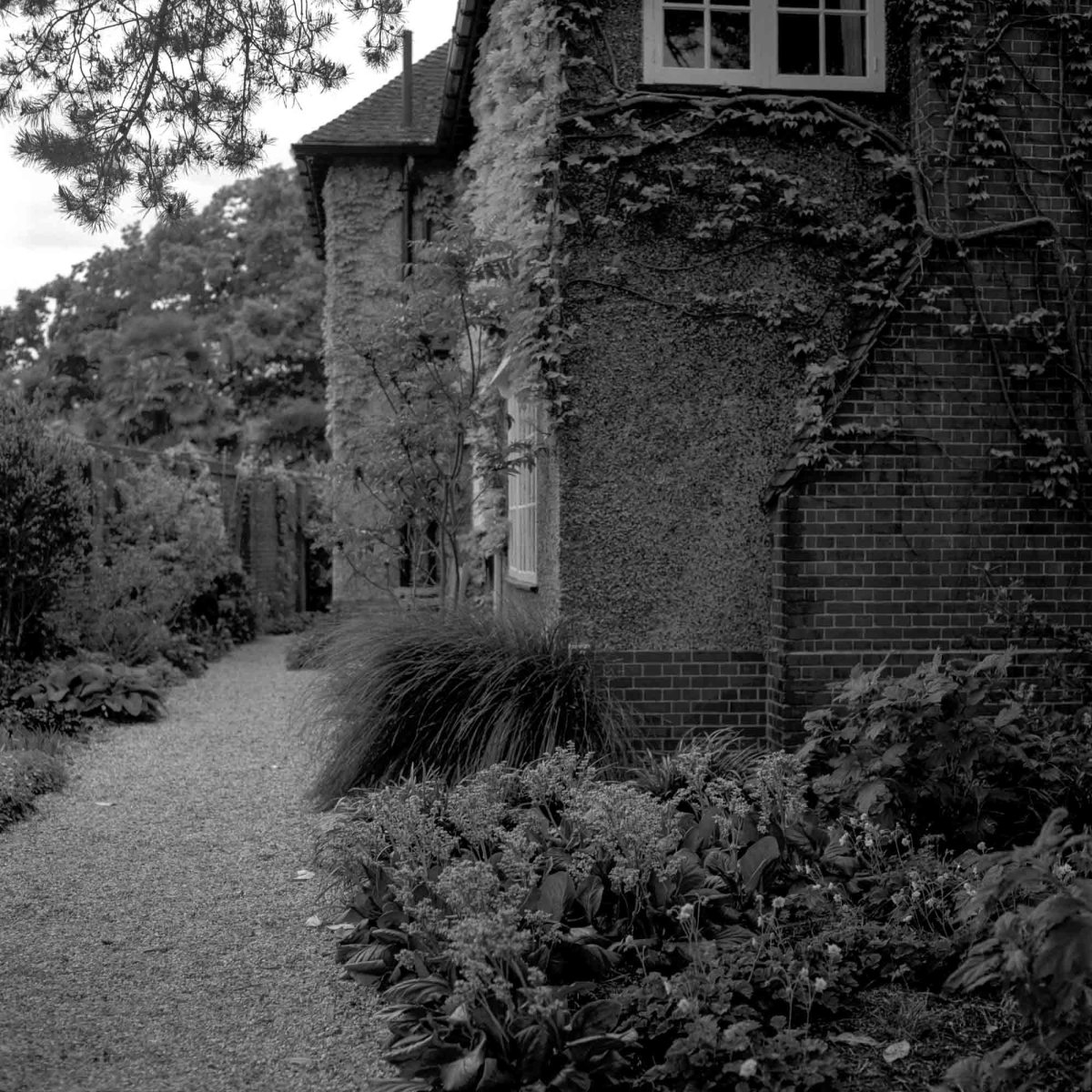 Side entrance - Shot on Fujifilm NEOPAN 100 ACROS at EI 200. Black and white negative film in 120 format shot as 6x6. 1-stop push process.