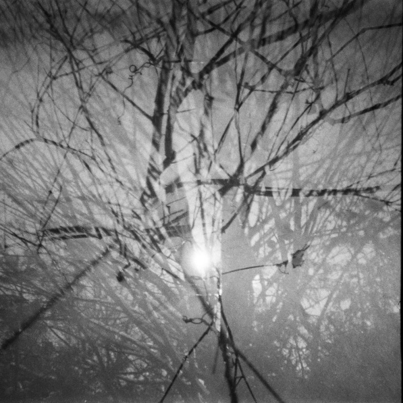 5 Frames With... Street Candy ATM 400 (EI 400 / 35mm / Lomography Diana Mini) - by Vi Merveilles
