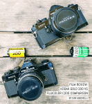 Film review: Kodak Gold 200 vs Fujicolor C200 comparison - by Dan Marinelli