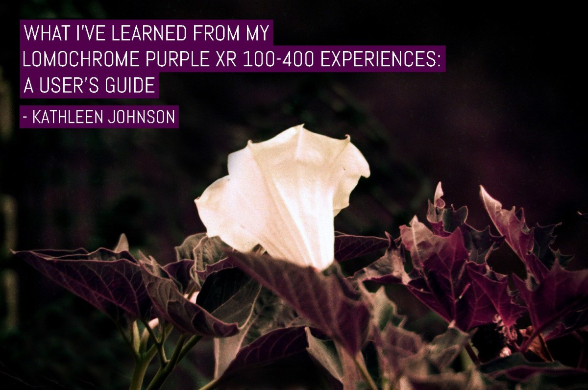 What I've learned from my LomoChrome Purple XR 100-400 experiences: A user's guide