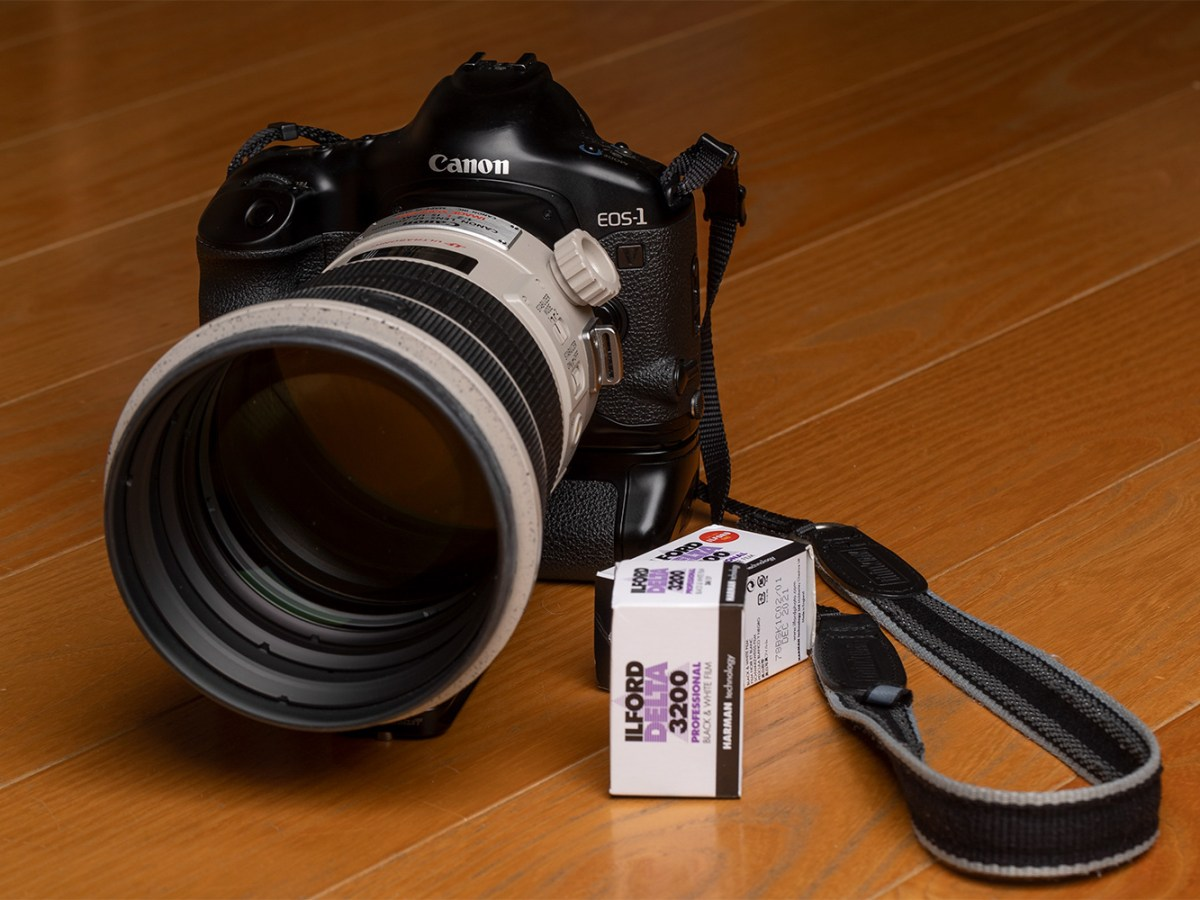 My Canon EOS-1V HS and 200mm f/2 IS lens