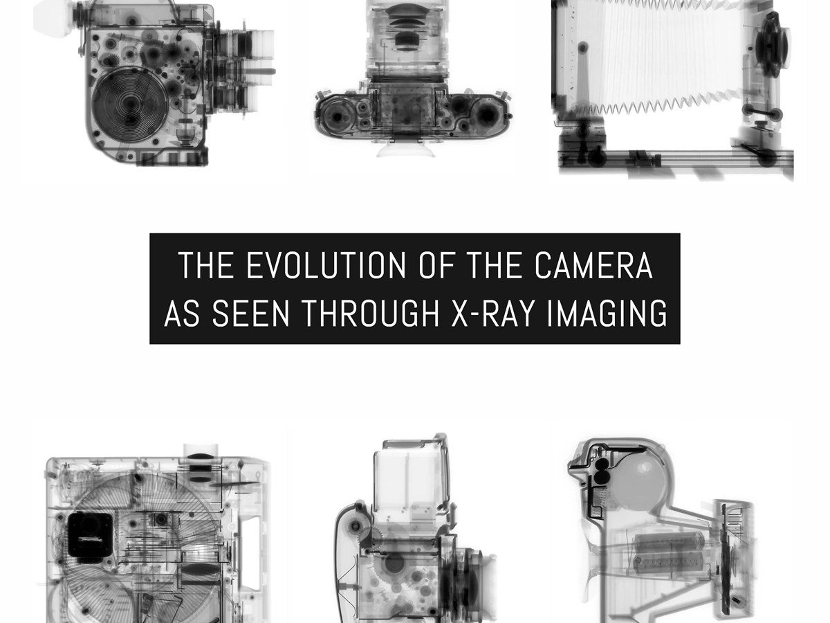 The evolution of the camera as seen through X-ray imaging