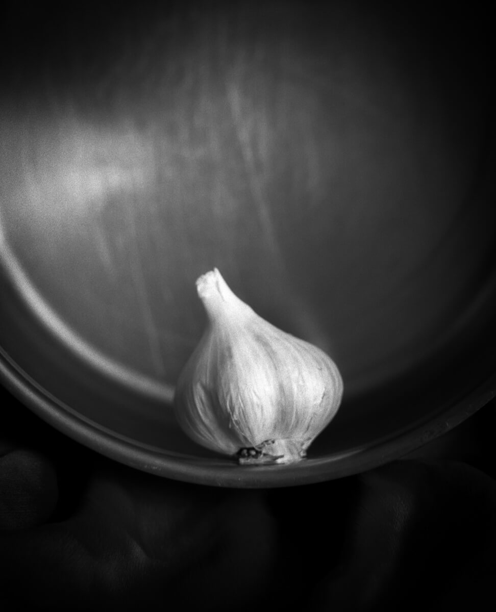 Garlic - Mamiya RB67 Pro S with 180mm lens, Rollei Ortho 25 Plus