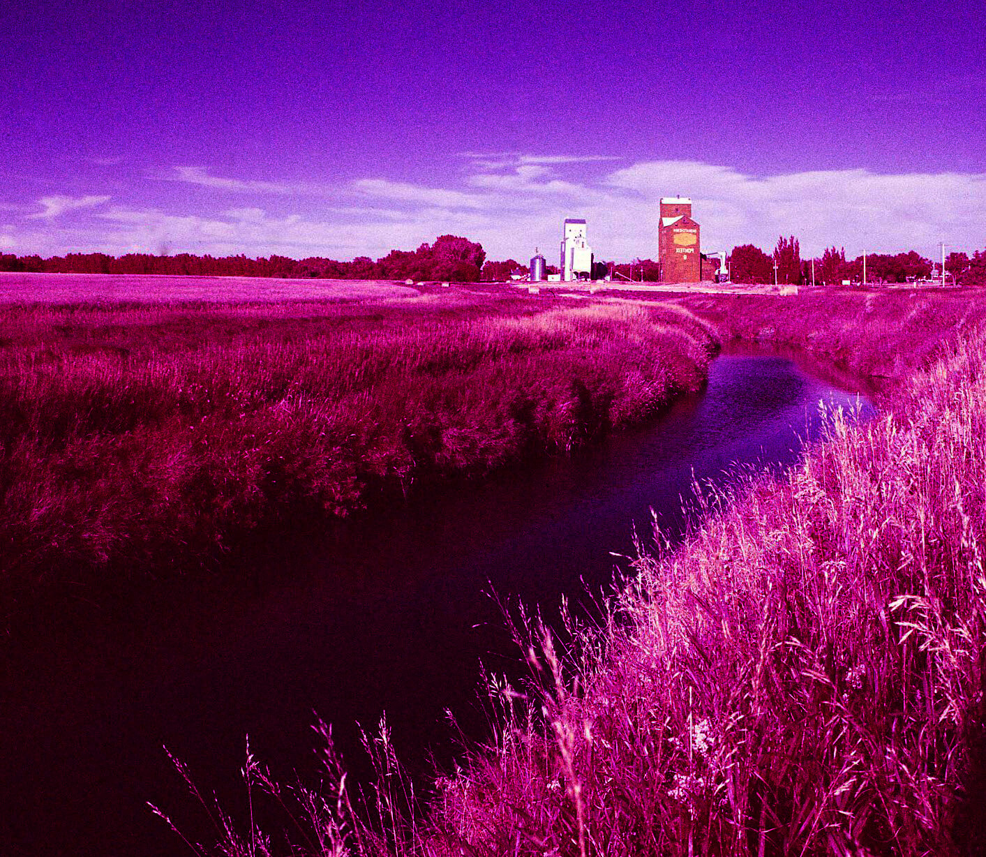 5 Frames... Of the Saskatchewan prairies on Kodak AEROCHROME III Infrared Film 1443 (120 Format / EI 400 / Mamiya C330 Professional S) - by Bob St-Cyr