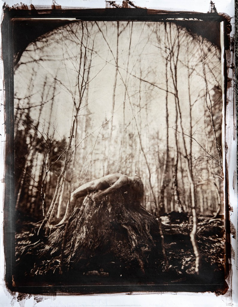 A print from a wet plate collodion photograph of a man laying naked on a tree stump