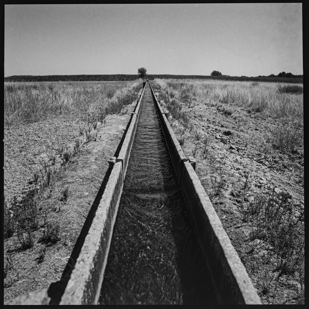 Water canal, Alentejo Hasselblad 500C, Carl Zeiss Distagon 50mm f/4, ILFORD FP4 PLUS