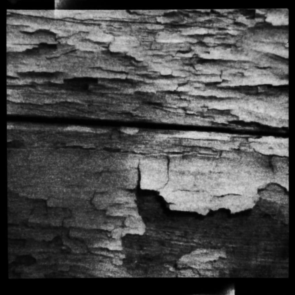 Decayed Paint - ILFORD Pan F PLUS
