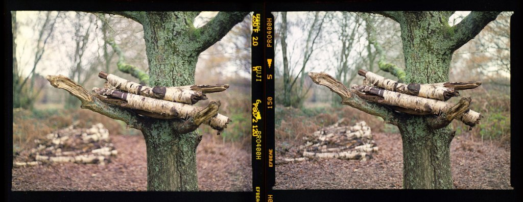 Lens Comparison - The Contax 645 at f/2 (left), and Pentax 645 NII at f/2.8 (right)
