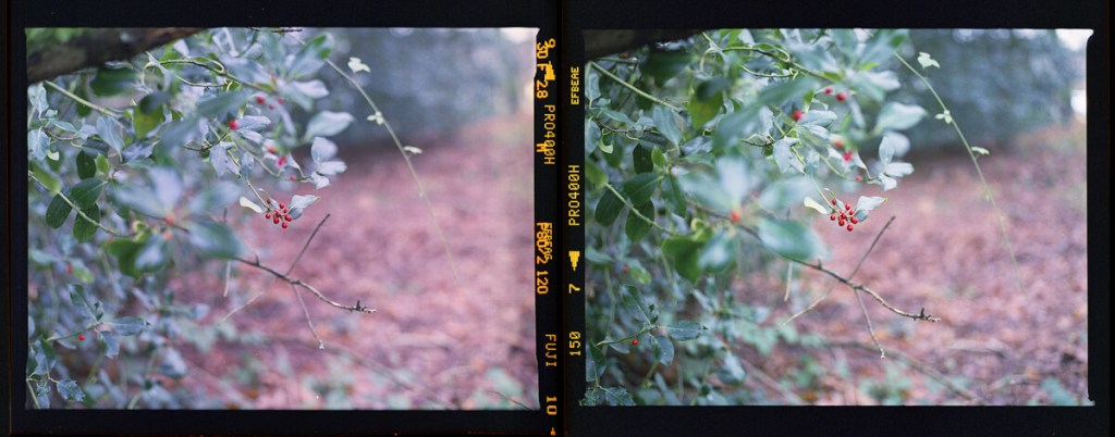 Lens Comparison - The Contax 645 at f/2.8 (left), and Pentax 645 NII at f/2.8 (right)