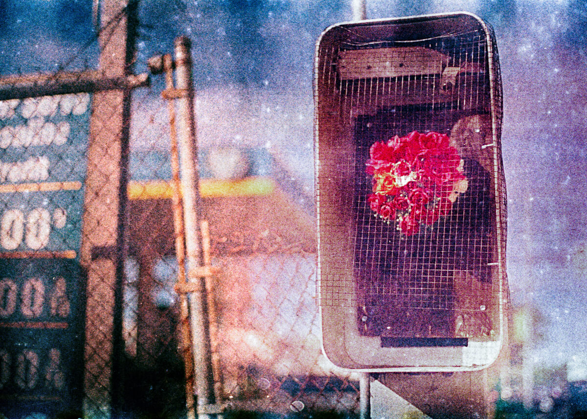 More recent works are outfitted with a wire-mesh ruination deterrent over the front of the payphone enclosure - Kodak EASTMAN 200T 5293, Ryan Steven Green