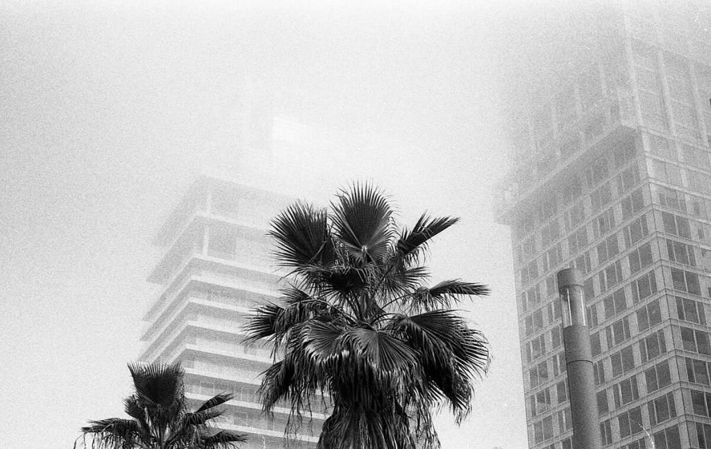 5 Frames... Of ILFORD HP5 PLUS on a Werra I (35mm Format / EI 500 / Carl Zeiss Jena 50/2.8 Tessar) - by Victor Lefelman