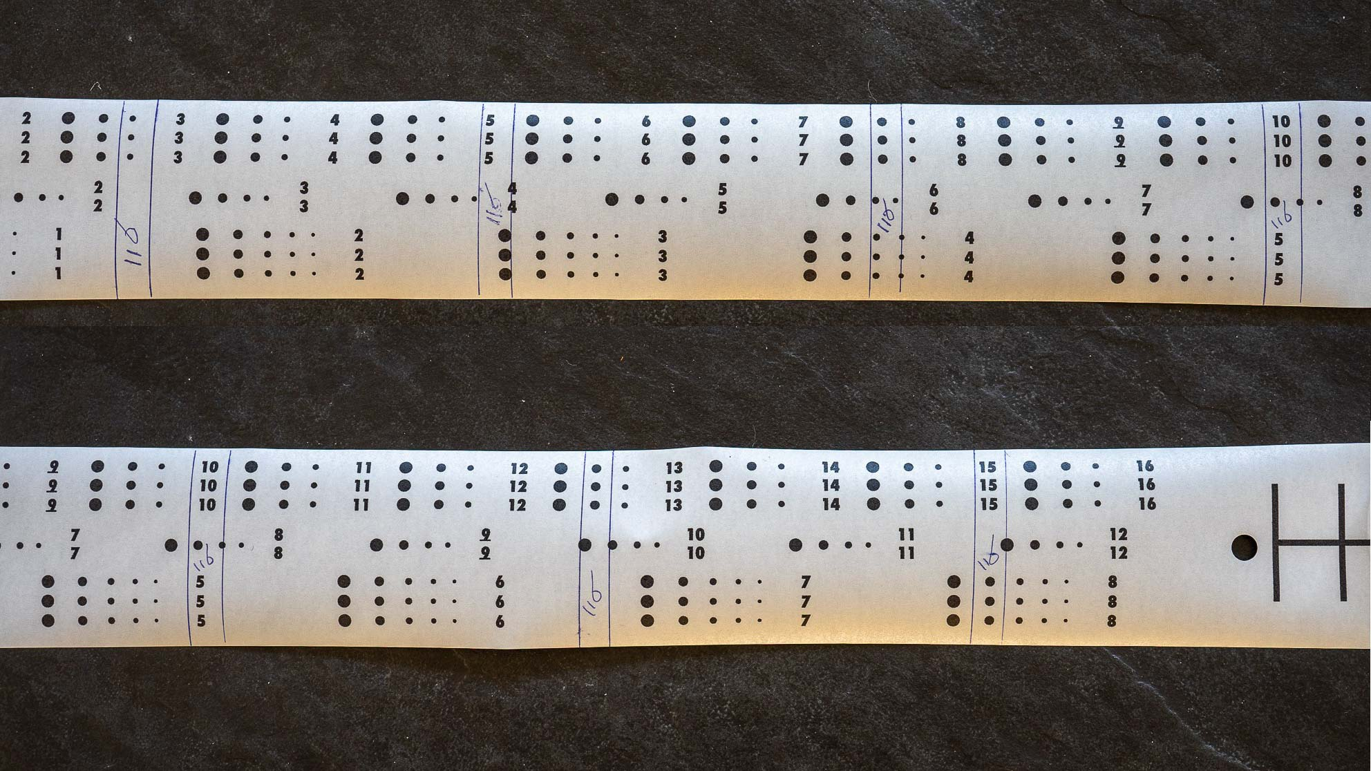 Backing paper of 120 film with spacing of 116 film indicated by hand.