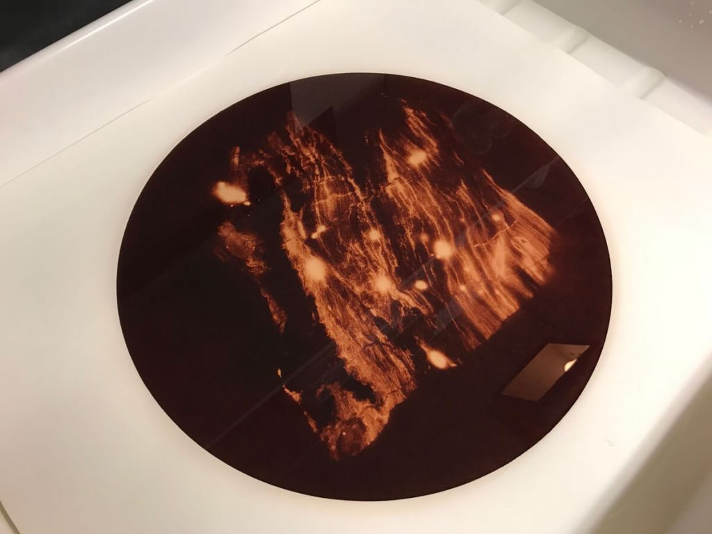 """""""Uranotype in the wash"""", A Uranotype is washed during the final stage of processing."""