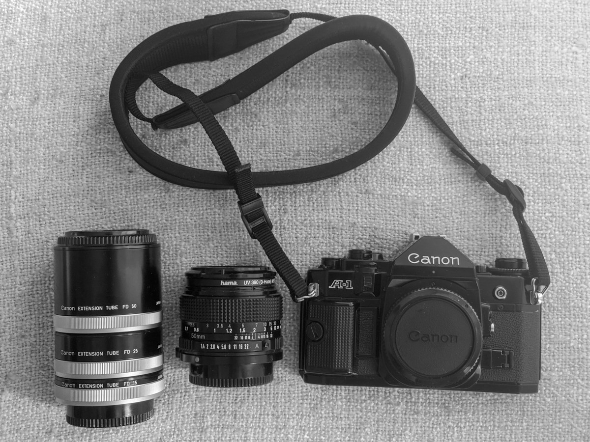 My Canon A-1, Canon New FD 50mm f/1.4 + macro extension tubes