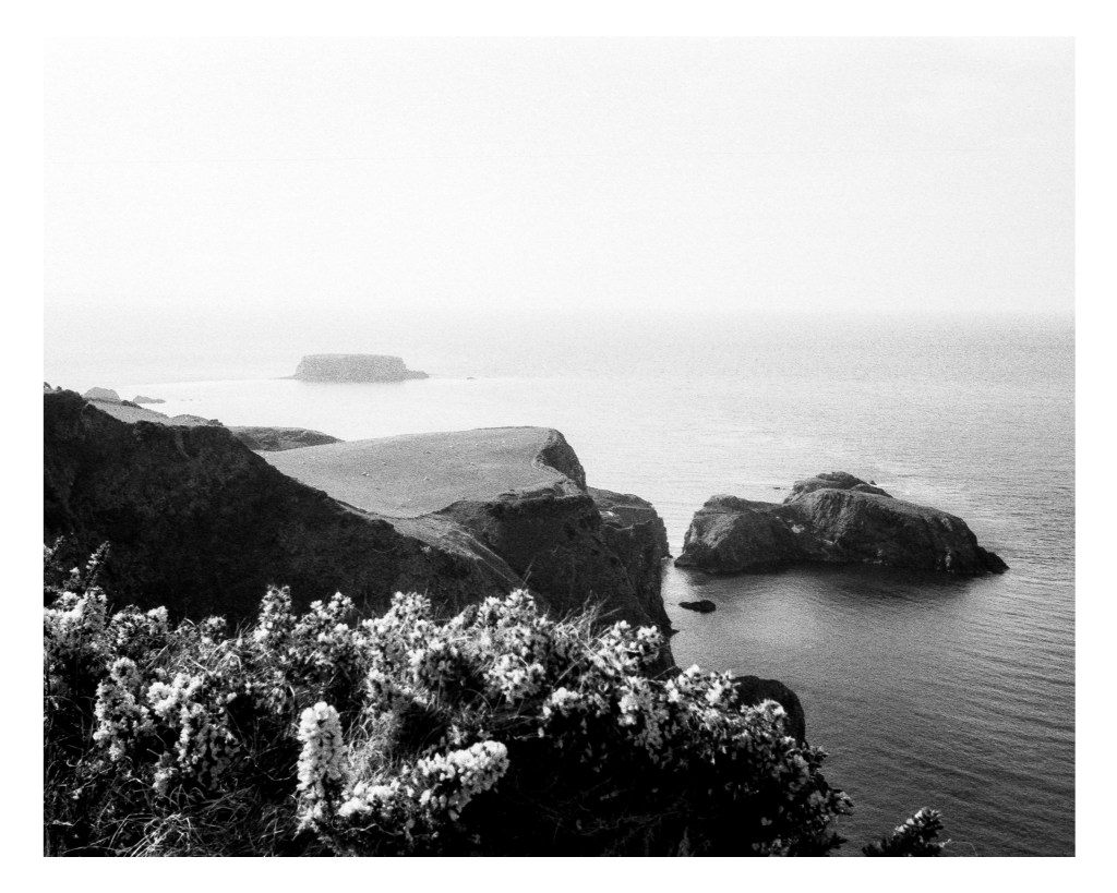 5 Frames... Of Ireland's North East Coast on Fomapan 400 Action and a Canon FD 50mm f/1.8 S.C (35mm Format / El100 / Canon AE-1 Program) - Shaun Donnelly