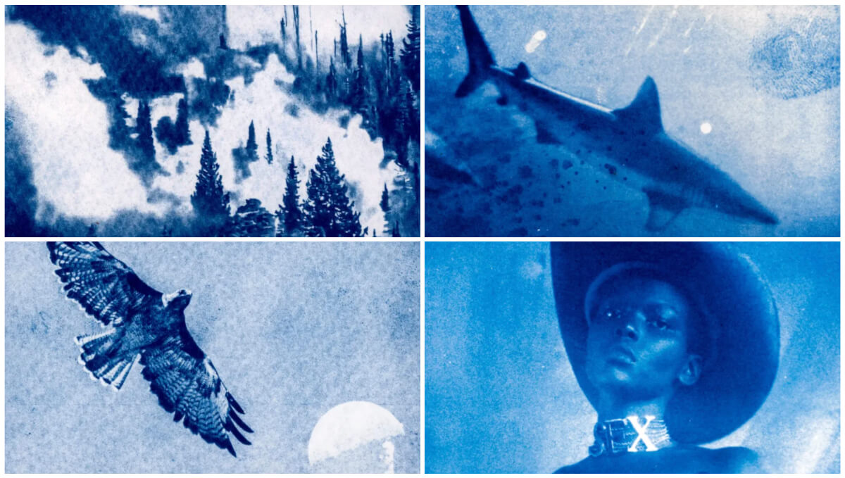 How I transformed cyanotype prints into a video for Vivienne Westwood